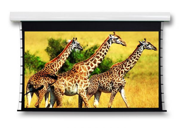 Motorised Projection Screen - mps product 1