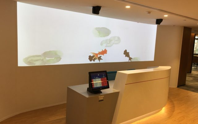 Projector Installation
